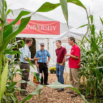 Crops grown and livestock raised in Iowa reach across the globe, feeding our state, nation and global community. 2019 National Ag Day, March 14, celebrates these farmers, highlighting their contributions to agriculture in our everyday lives. (Courtesy of ISU Extension and Outreach)
