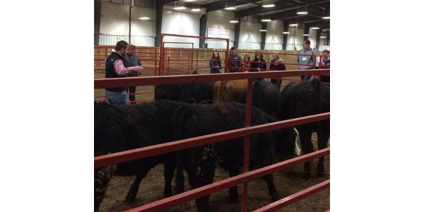 A training session for livestock judging coaches will be held on April 20 at the Hansen Agriculture Learning Center in Ames.