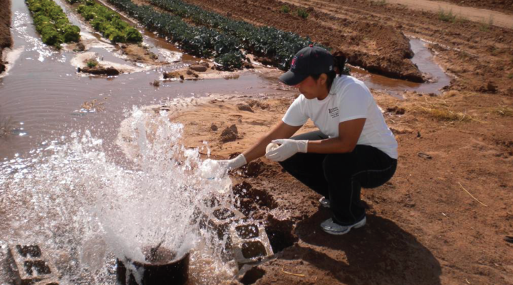 Better water testing, safer produce