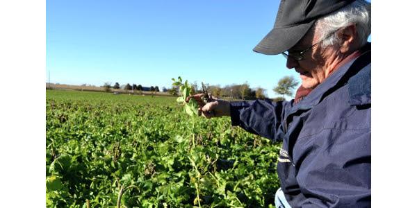 Soil health case studies share farmer knowledge