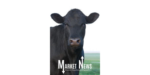 The Missouri Department of Agriculture's Ag Market News team has launched the Missouri Stocker Formula – a seven day calculated weighted value for feeder steers reported by the Department/USDA Market News Service weighing 400-649 lbs. (Courtesy of Missouri Department of Agriculture)