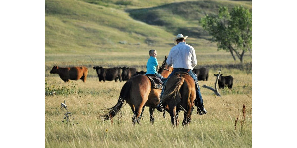 Rancher encourages others to utilize cost share