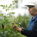 No-till gardening was the low-maintenance solution Master Gardener Donna Adrian had been looking for. It changed her gardening methods and outlook. Affectionately dubbed the Garden Lady by local school children, the 75-year-old shares the message that anyone can garden. (Joe Dickie)