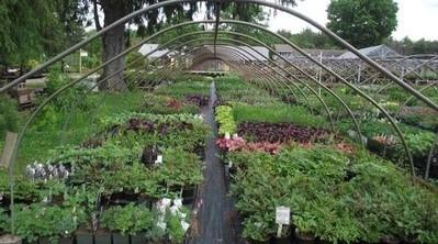 Register for Greenhouse Best Practices Workshop