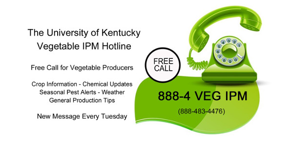 University of Kentucky Vegetable IPM Hotline