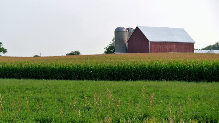 Indiana Right To Farm Act Reaffirmed Morning Ag Clips