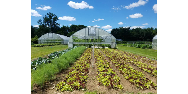 "A farm tour on ""Season Extension and Farm Efficiency"" will be held Saturday, April 27, from 9:30 a.m. to 12:30 p.m., at 10th Street Farm and Market, in Afton (13197 10th St. South). (Courtesy of Land Stewardship Project)"