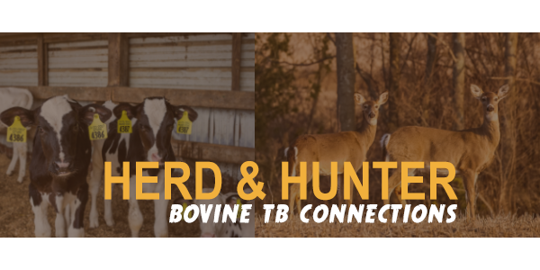 May's Herd & Hunter Bovine TB Connections meetings will feature Phil Durst from MSU Extension, presenting on deer and cattle gut health and the nutritional needs of both species. (Courtesy of Michigan DNR and MDARD)