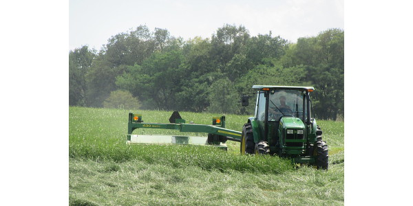Cut early for quality hay. (Courtesy of University of Missouri Extension)