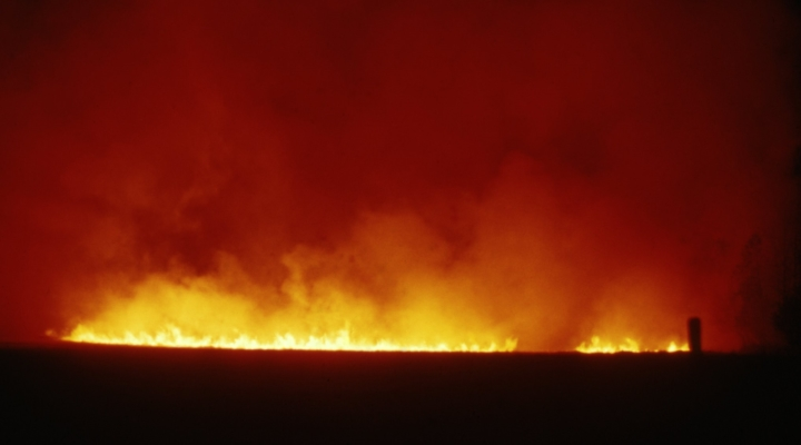Crop fires, a weapon of war, ruin Iraqi, Syrian harvests | Morning