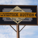 Lamoni Livestock Auction Market's Jared Miller and Jason Allen of Lamoni, Iowa along with Joe Fisher of Fisher Farms in Murray, Iowa showcase the important role a local market has on the community, economy and Iowa's beef business. (Courtesy of Iowa Beef Industry Council)