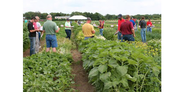 The 2019 Field School for Ag Professionals will be held on July 30 - 31 at the University of Minnesota Agriculture Experiment Station in St. Paul. (Courtesy of University of Minnesota Extension)
