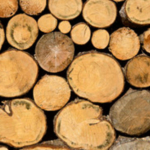 The Missouri Department of Agriculture is hosting a 5-day lumber grading short course in conjunction with the National Hardwood Lumber Association (NHLA) June 10-14, 2019 in Fayette, Missouri. (Courtesy of Missouri Department of Agriculture)