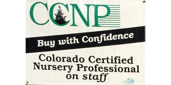 If you're looking for a way to boost the horticulture knowledge of your staff, then sign them up today for the Colorado Certified Nursery Professional (CCNP) classes. (CNGA)