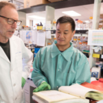 Professor Glenn Telling, director of the Prion Research Center at CSU (left), talks with Jifeng Bian, research assistant, about their chronic wasting disease research. (Photo: Bill Cotton/CSU Photography)