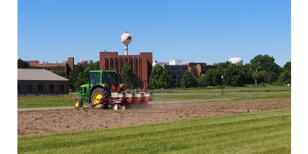 Establishing corn and soybean growth stage plots for the 2019 Field School. (Courtesy of University of MInnesota Extension)