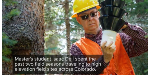 Study co-authors Seth Davis, assistant professor in CSU's Forest and Rangeland Stewardship department, and Isaac Dell, a graduate student at Montana State University, combined new beetle population and environmental data with climate projection models to see what could be in store in the future. (screenshot from video)