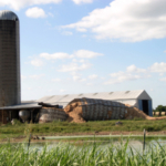In 2016, this dairy silo collapsed in southwestern Missouri. Following drought last year, many silos are empty, providing an opportunity to inspect silos, says MU Extension dairy specialist Reagan Bluel. (Photo courtesy of Murray Bishoff, The Monett Times)