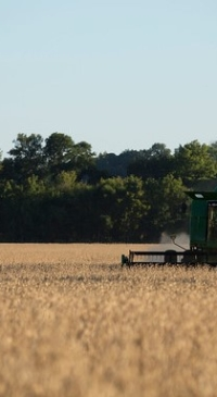 Proposed biofuels a big miss for soybean farmers