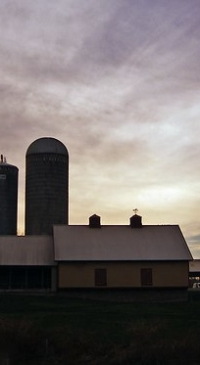 Lawmakers hear pros & cons of dairy co-op merger