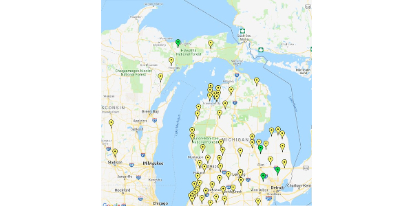Figure 1. July 3, 2019 – Michigan late blight forecast based on accumulation of disease severity values (DSVs) since early May emergence. Yellow pins indicate medium risk areas and green pins indicate low risk. (Courtesy of MSU Extension)