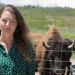 Jennifer Barfield, assistant professor in the College of Veterinary Medicine and Biomedical Sciences, says the growth of the herd has allowed them to share bison with tribal and conservation groups. (Photos by William A. Cotton)