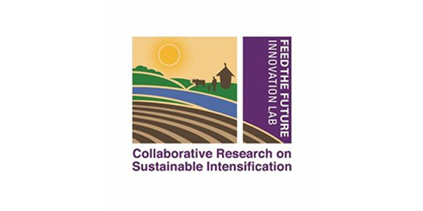 Kansas State University, through the Feed the Future Innovation Lab for Collaborative Research on Sustainable Intensification (SIIL), has joined the Rutgers University-housed Policy Research Consortium. The consortium conducts impact studies related to agricultural and food-security policy to improve the livelihoods of ag producers and consumers around the world. (Courtesy of K-State Research and Extension)