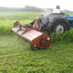 Grain and livestock farmers can both benefit from the recent rule change by the United States Department of Agriculture, which allows farmers who planted cover crops on prevented plant acres to harvest those fields beginning Sept. 1. (Courtesy of ISU Extension and Outreach)