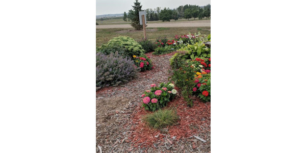 The Burleigh County Pollinator Garden in Bismarck receives the Public Garden Award during the 2019 NDSU Extension Master Gardener program awards ceremony in Fargo. (NDSU photo)