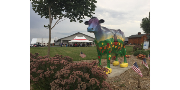 Dairy farmers, allied members of the dairy community and guests are invited to attend the annual policy picnic events July 17-18, at four locations over two days on member-farms. (Courtesy of The Dairy Business Association)