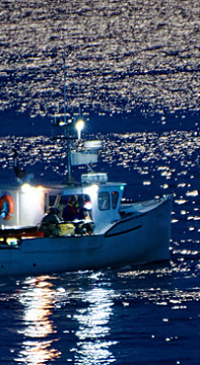 Lobstermen join with pols to oppose whale rules