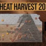 This is day 9 of the Kansas Wheat Harvest Reports, brought to you by the Kansas Wheat Commission, Kansas Association of Wheat Growers and the Kansas Grain and Feed Association. (Courtesy of Kansas Wheat)