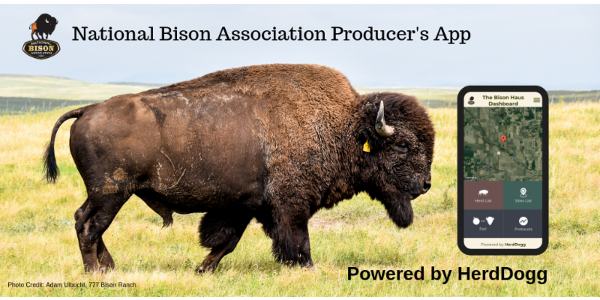 HerdDogg, an innovator of precision livestock and remote animal health, has partnered with the National Bison Association to deliver the NBA Bison Producer's app. (Courtesy of National Bison Association)