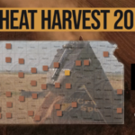 This is day 14 of the Kansas Wheat Harvest Reports, brought to you by the Kansas Wheat Commission, Kansas Association of Wheat Growers and the Kansas Grain and Feed Association. (Courtesy of Kansas Wheat)