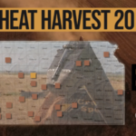 This is day 10 of the Kansas Wheat Harvest Reports, brought to you by the Kansas Wheat Commission, Kansas Association of Wheat Growers and the Kansas Grain and Feed Association. (Courtesy of Kansas Wheat)