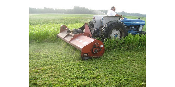 The adjustment allows farmers to harvest cover crops on prevented plant acres two months earlier than most years, which will be beneficial in a year when both grain and forage crops are limited. (Courtesy of ISU Extension and Outreach)