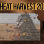 This is day 8 of the Kansas Wheat Harvest Reports, brought to you by the Kansas Wheat Commission, Kansas Association of Wheat Growers and the Kansas Grain and Feed Association. (Courtesy of Kansas Wheat)