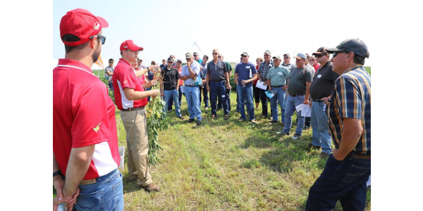 At this year's Soybean Management Field Days, sponsored by the Nebraska Soybean Checkoff, growers will learn how to increase profits while becoming competitive in the global market. Several speakers will address research on integrating cover crops into soybean rotations. (Photo by Lana Johnson)