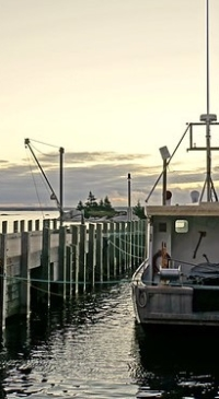 Settlement means 'Codfather' will never fish again