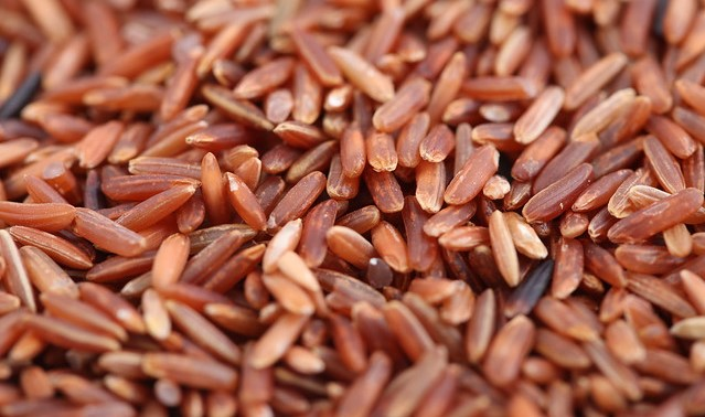 Discovery could lead to disease-resistant rice crops