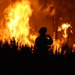 fire wildfire (U.S. Fish and Wildlife Service Southeast Region, Public Domain)