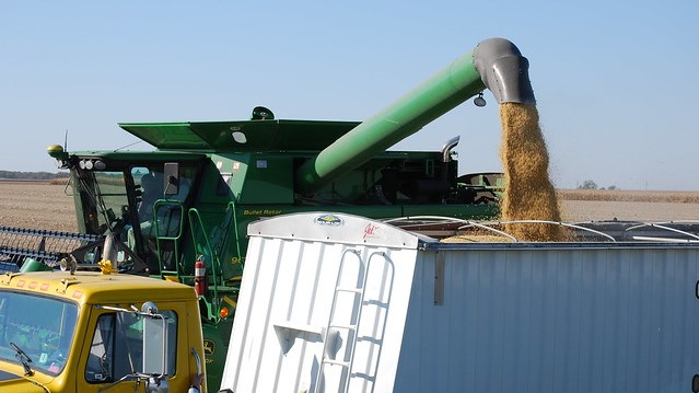 USDA forecasts corn, soybean production down