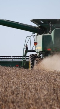 More waivers, more woes for struggling soy markets