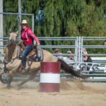 The public is invited to the 55th Annual Falcon Frontier Days Rodeo on Friday and Saturday, Sept. 6 and 7, at the University of Wisconsin-River Falls Rodeo Arena. (Courtesy of UW-River Falls)