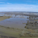 Spring floods and soils that just didn't dry out led to prevented plant acres being reported on more than 400,000 acres of Nebraska cropland. Overall Nebraska ranked 16th in the nation on prevent plant acres. (Courtesy of UNL)