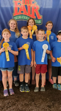 Genesee Co. 4-H Dairy Club competes at NYS Fair