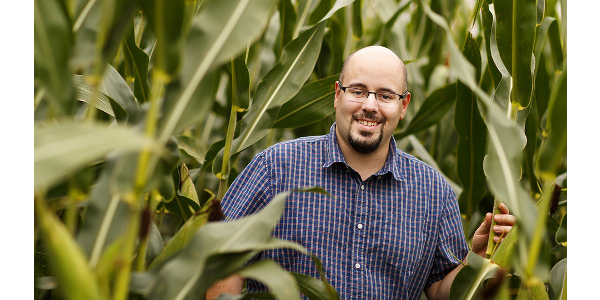 By measuring the water use of plants on an hourly or even minute-by-minute basis, Nebraska's James Schnable and colleagues hope to better understand and eventually improve how crops respond to drought. (Craig Chandler - University Communication)