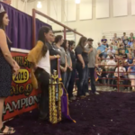 A screenshot from Saturday's Sale of Champions' live feed on the Missouri State Fair's Facebook page.