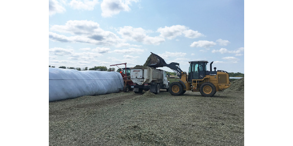 Bagging silage can reduce spoilage/shrink loss, especially for those that do not cover their silage bunkers or piles with plastic. (Photo credit Mary Drewnoski)