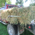 Don't guess, use a hay probe and test the hay for quality. (Photo credit: MU Extension)